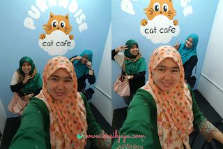 Purradise Cat Cafe Taman Tun Dr Ismail.