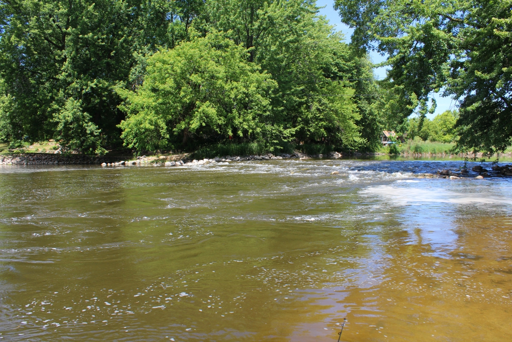 Illinois wisconsin fishing endurance the plight of the for Milwaukee river fishing