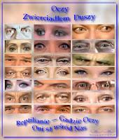 Oczy zwierciadłem Duszy — Reptilianie Gadzie Oczy — Oni są wśród nas Matrix