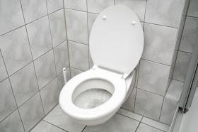 10 Cerita Unik dan Menarik Toilet Terkenal