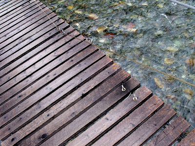 wooden bridge over rushing stream