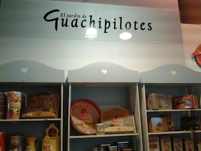El jardín de Guachipilotes