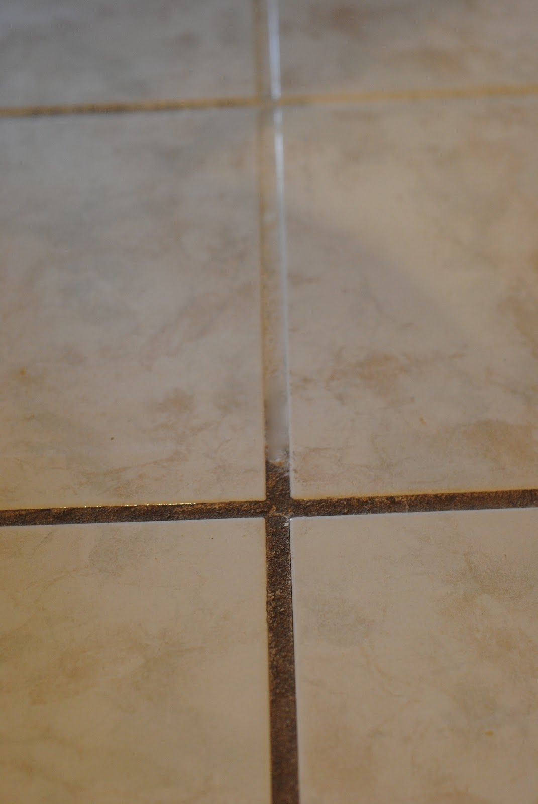 Tile And Grout Floor Cleaning Sealing Ceramic Stone