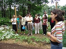 Connecticut College's Sustainable Garden Initiative
