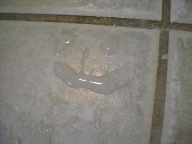 A Tile's Smile