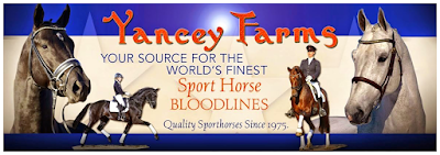 Judy's News from Yancey Farms
