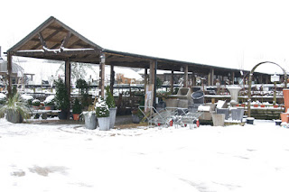 Preston Bissett Nurseries under snow