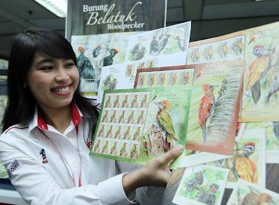 Kakitangan PosNiaga, Shafida Md. Sharif menunjukkan koleksi setem pertama tahun 2013 Burung Belatuk semasa majlis pengenalannya kepada media di Ibu Pejabat Pos Malaysia di sini hari ini. - UTUSAN/FAIZAL JAWI