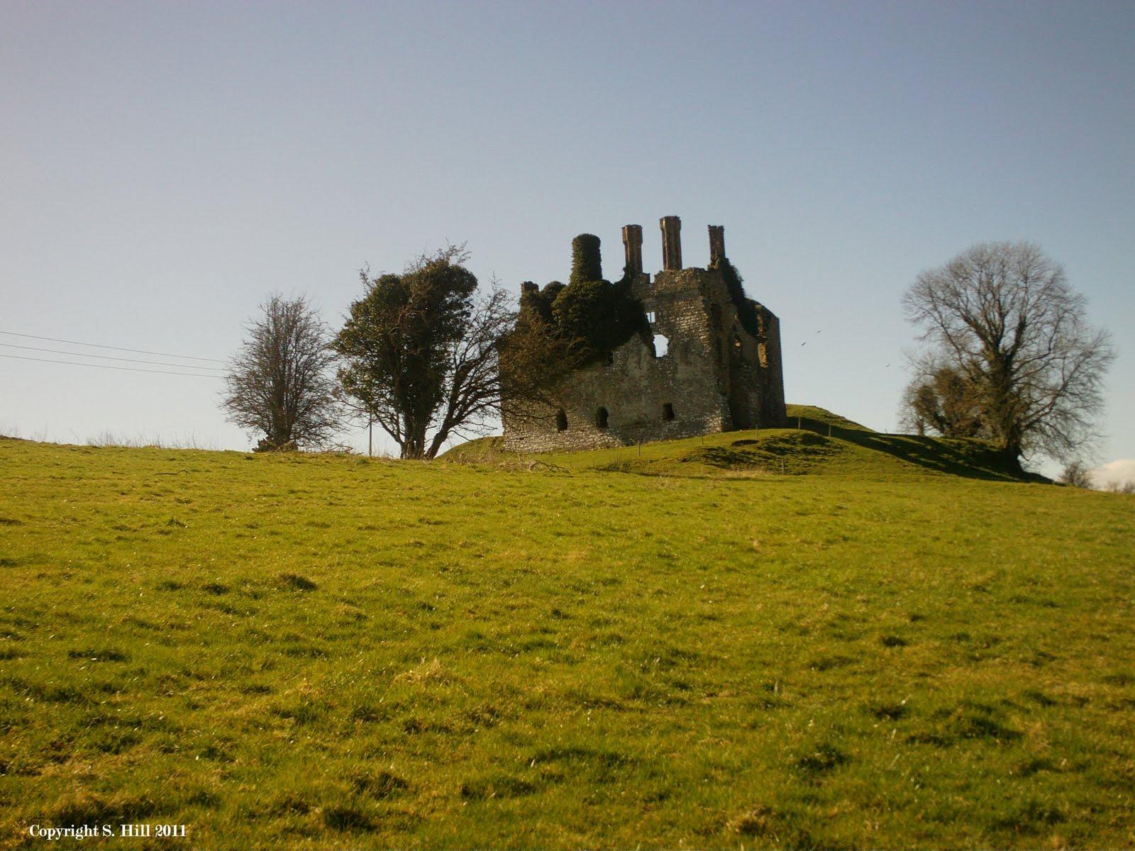 Ireland in ruins carbury castle co kildare for Kildare castle