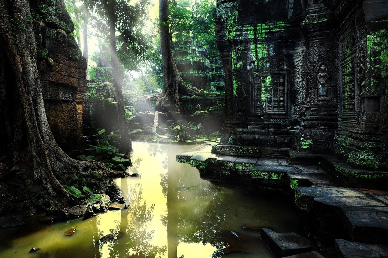 Nature Goodness Cambodia