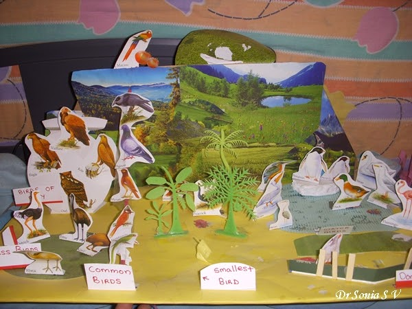 Cards ,Crafts ,Kids Projects: Birds Diorama