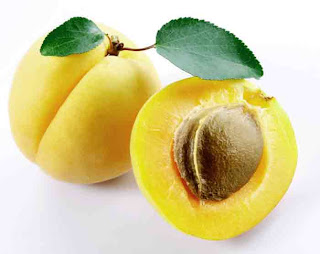 benefits_of_eating_apricots_fruits-vegetables-benefits.blogspot.com(7)