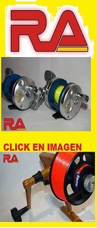 Reformas Magneticas