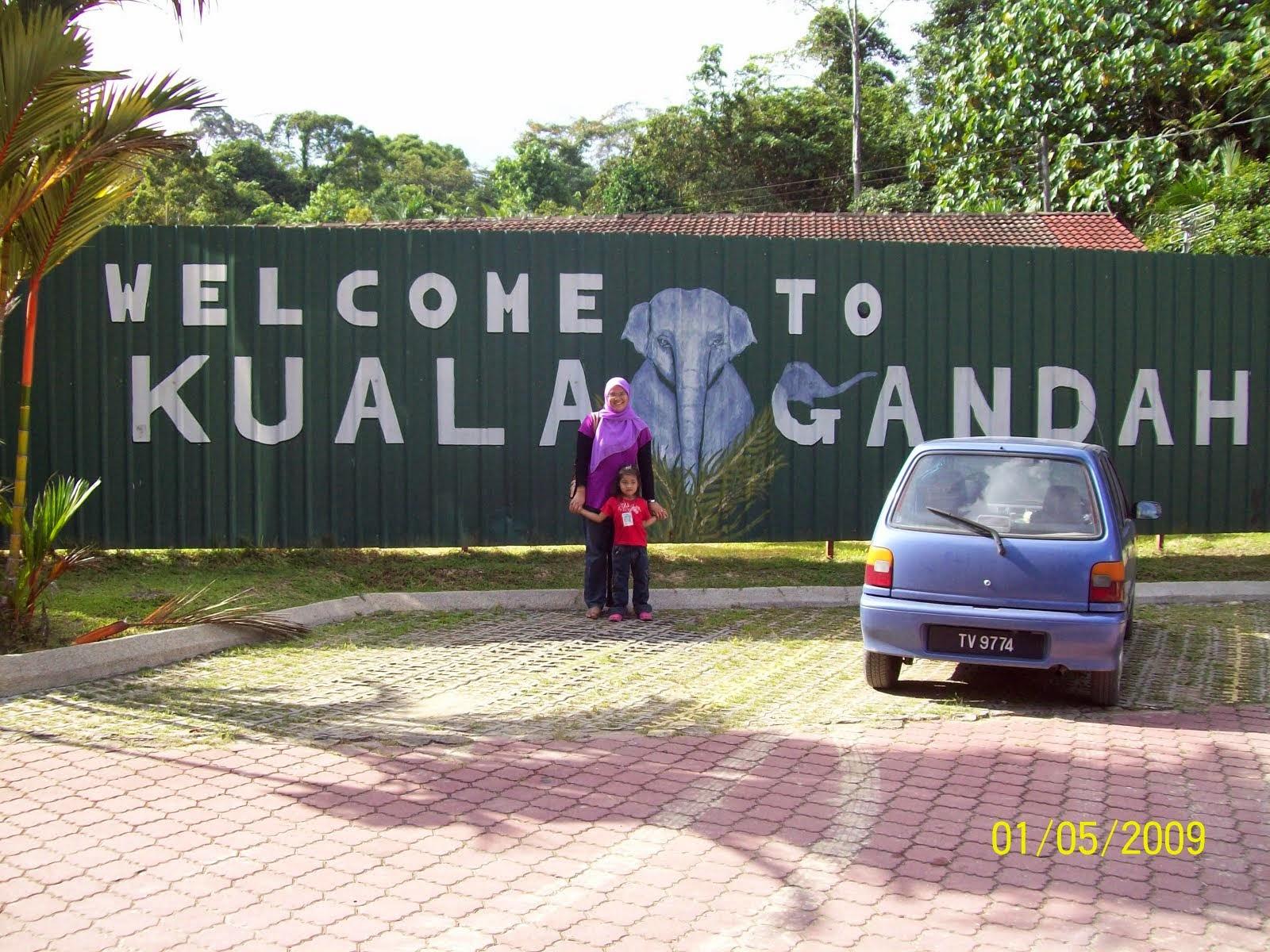Kuala Gandah, Pahang 2009