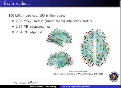 Graphs for Brain Scale