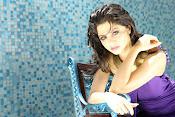 Vedhika glamorous photos gallery-thumbnail-16