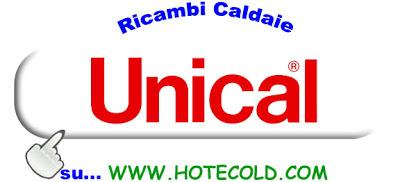 Ricambi per caldaie luglio 2013 for Caldaie vaillant modelli vecchi