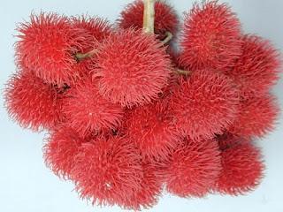 Frutas exóticas y bellas