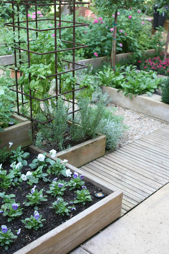 Ewa in the garden 24 beautiful photos of edible landscape for Edible garden design ideas