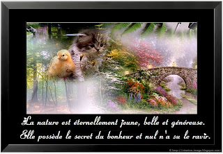Nouvelle citation en image sur la nature