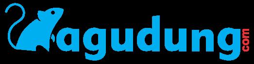 BAGUDUNG.com
