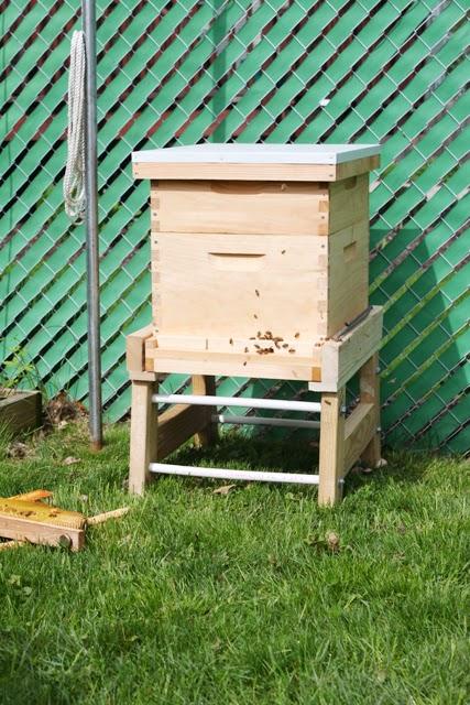 Bees And Honey Danks And Honey