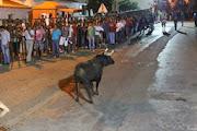 Fotos Santo Amaro 2013