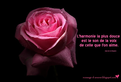 citation-d-amour-en-image