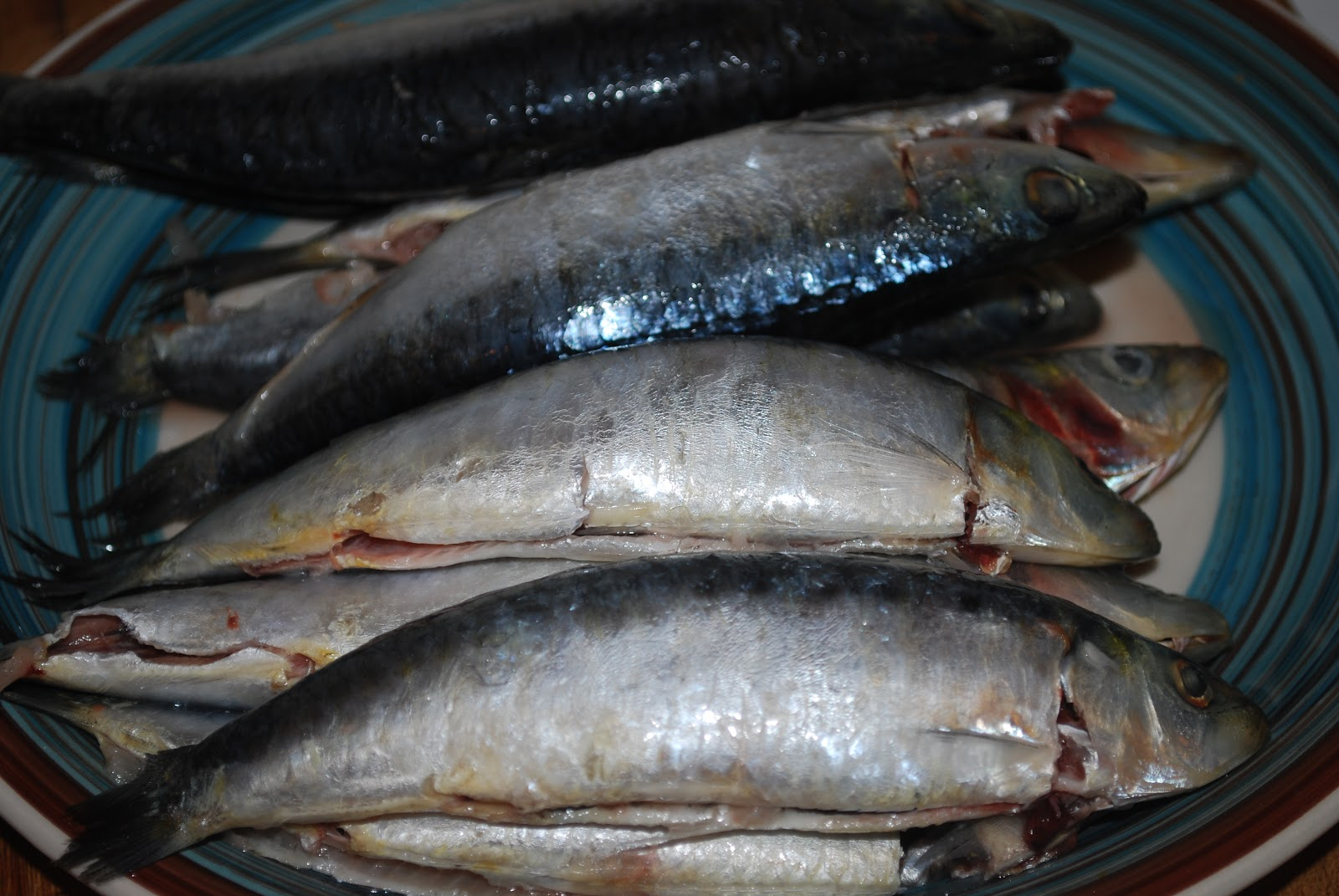 Kiss the kooks bbq sardines for Lowest mercury fish