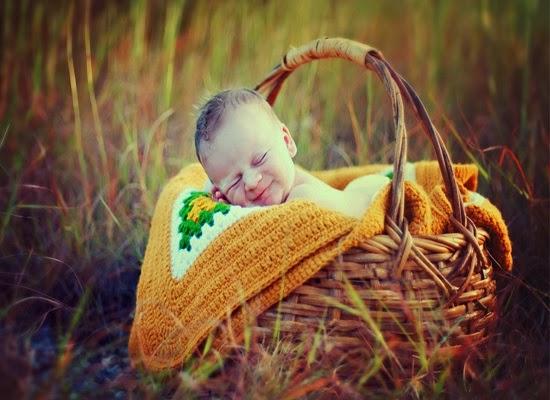 Photo bébé dans un panier