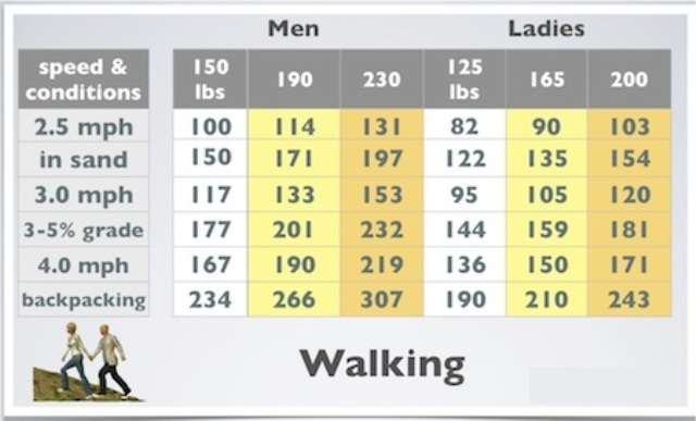 calories.burned.during.exercise.walking