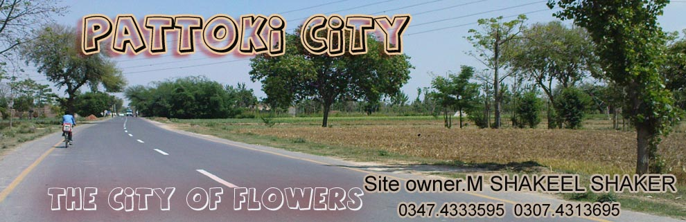 Pattoki City