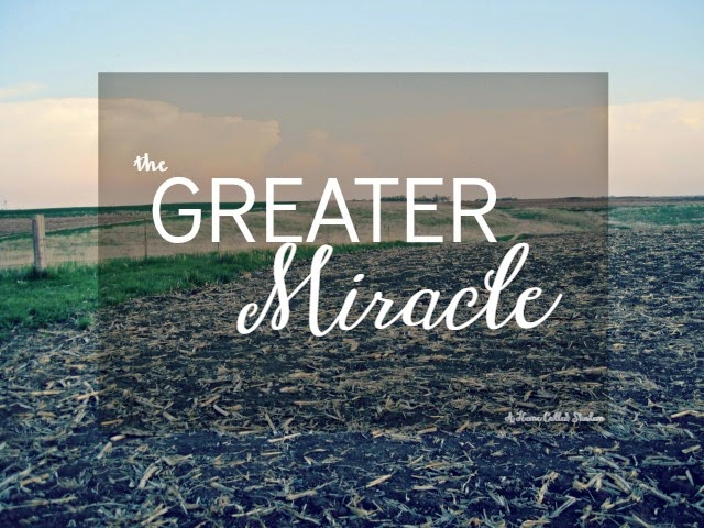The Greater Miracle- Maybe planting a seed is the greater miracle.   http://bit.ly/1BjGFNU