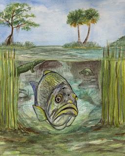Okeechobee Underwater