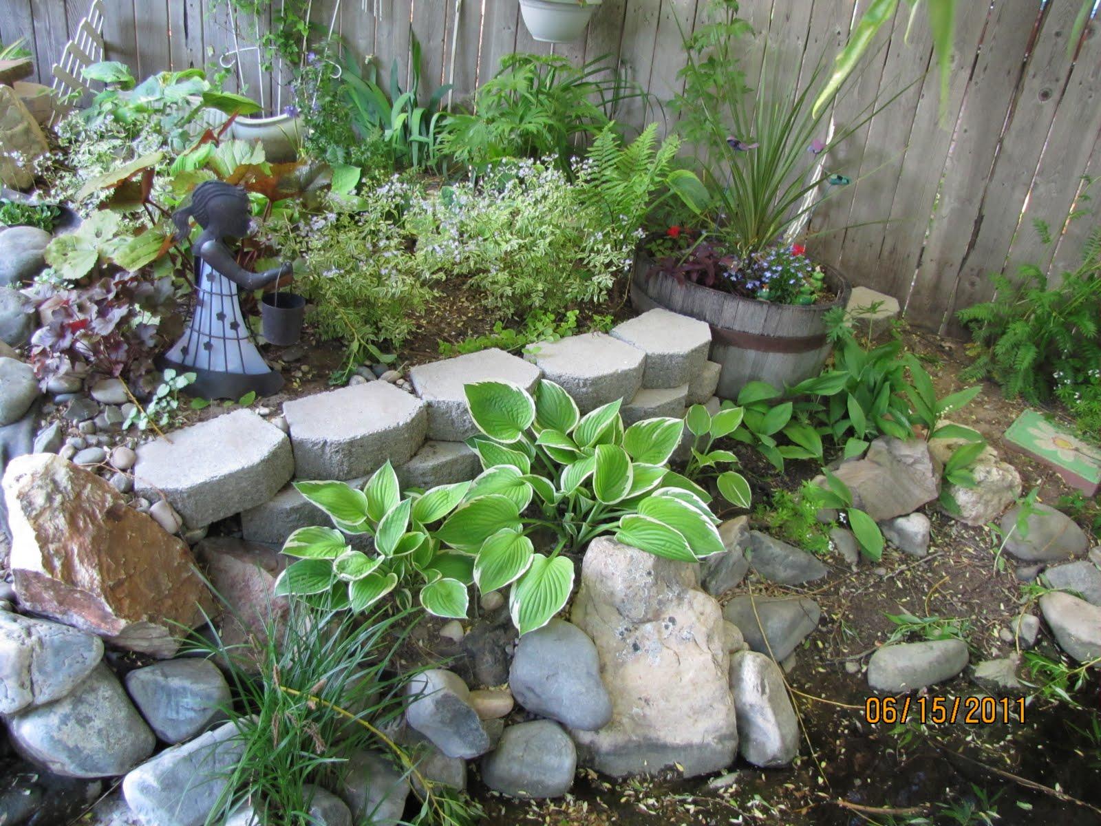 Buckets Of Gardening Ideas Our Side Yard