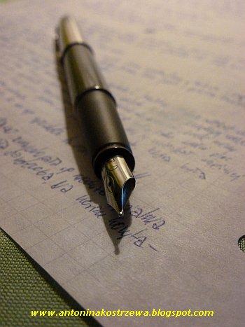 pisanie, książka, pisarka, pisarz, pióro