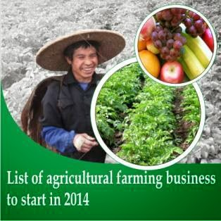 List of Agric Business to Start up