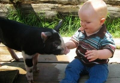 Доброта к животным - с детства