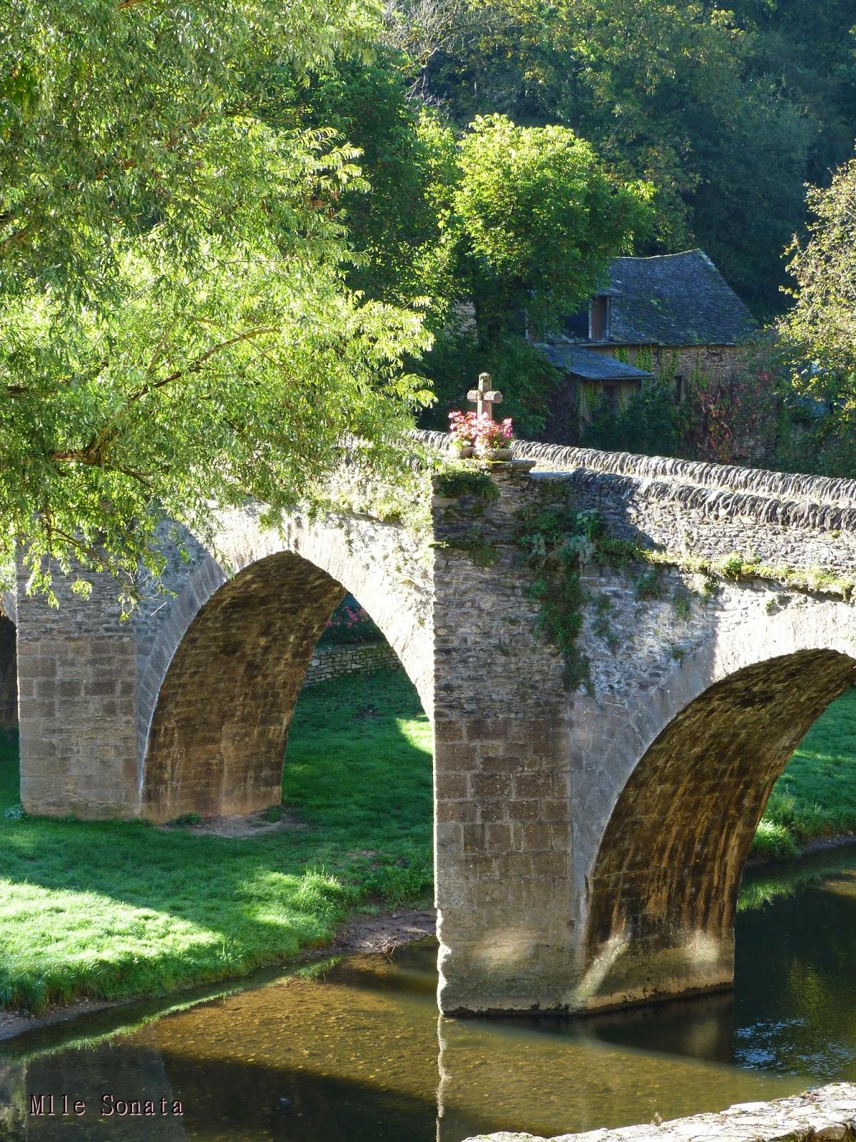Aveyron Belcastel Chateau pont
