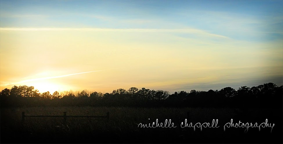 Michelle Chappell Photography
