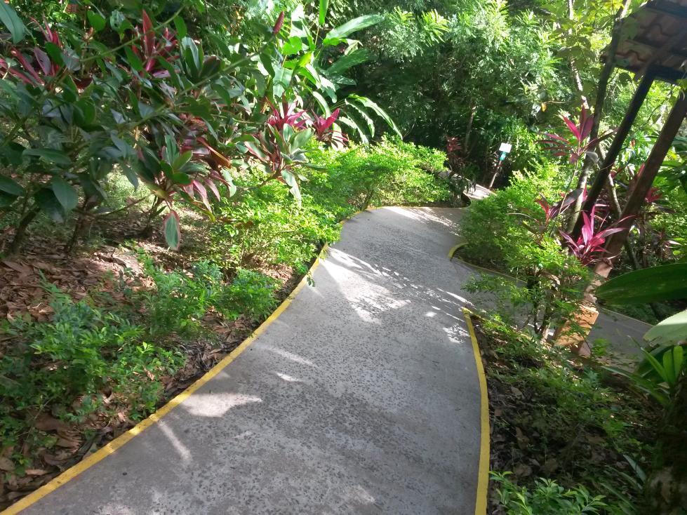 Costa rica tortuguero village beautiful places of for Jardines costa rica
