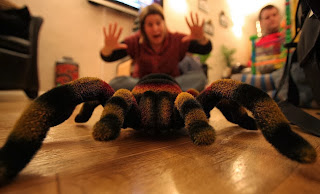 The radio controlled tarantula easily won the creepiest gift award