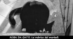 http://pisaendlove.blogspot.it/p/roba-da-gatti.html