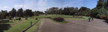 Foto Lokasi Kebun Raya Bogor yang Luas