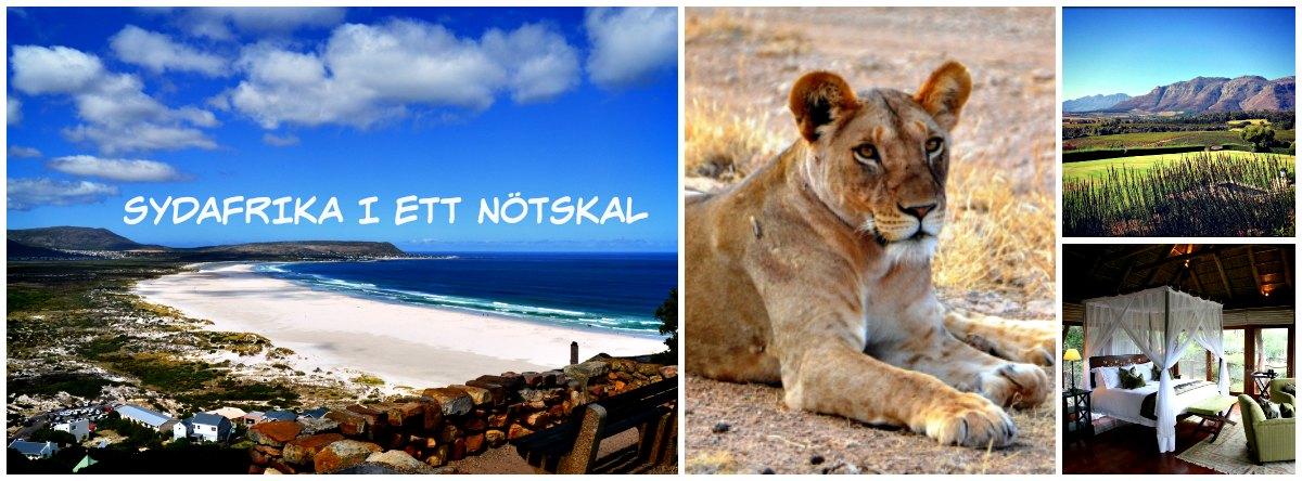 Sydafrika i ett nötskal- En blogg om livet i Sydafrika