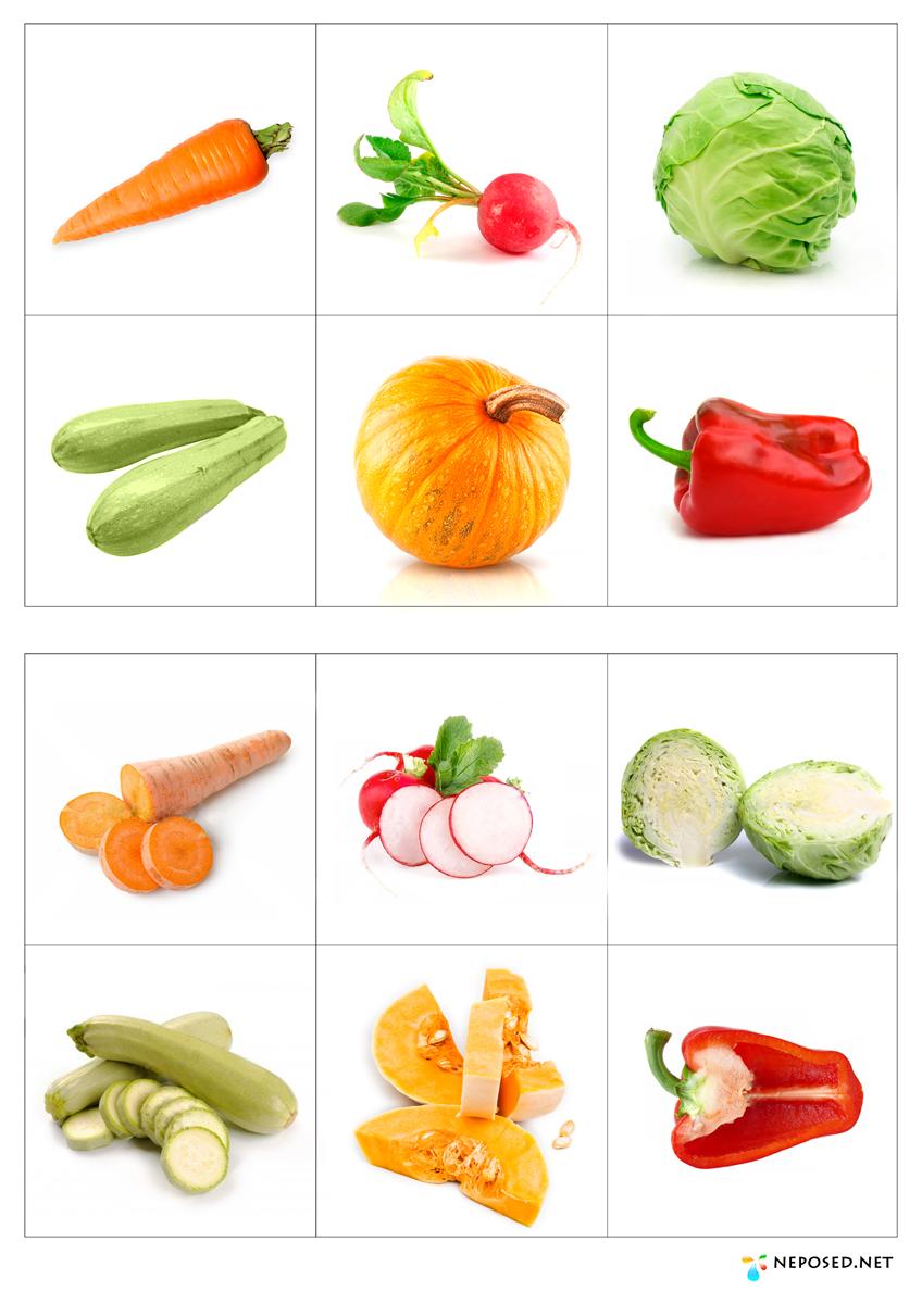 Картинки овощей и фруктов скачать
