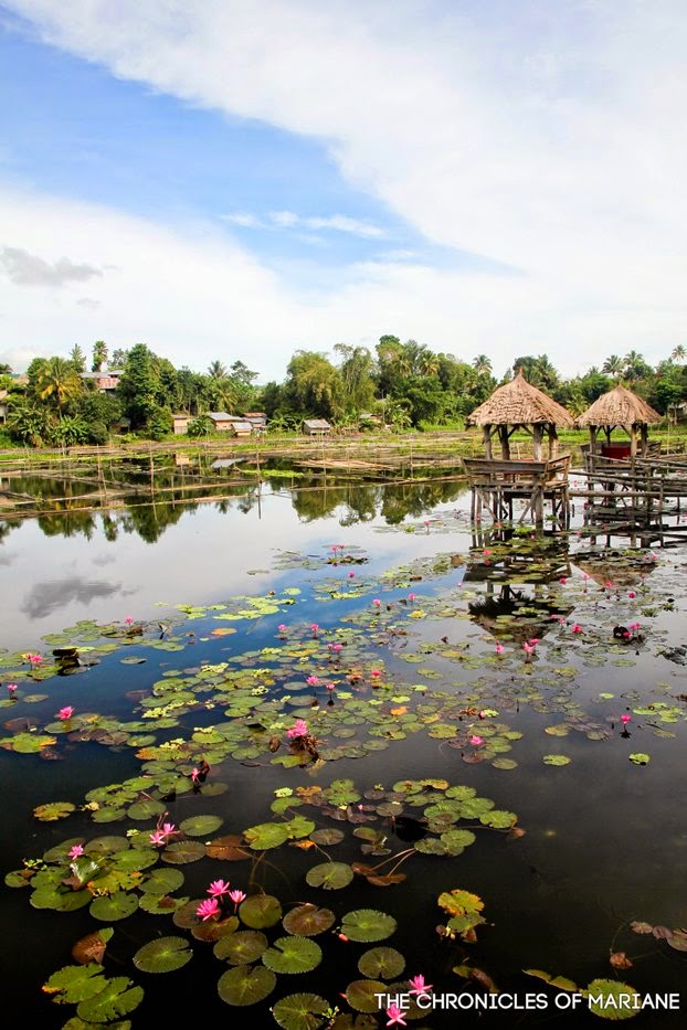 lake sebu view