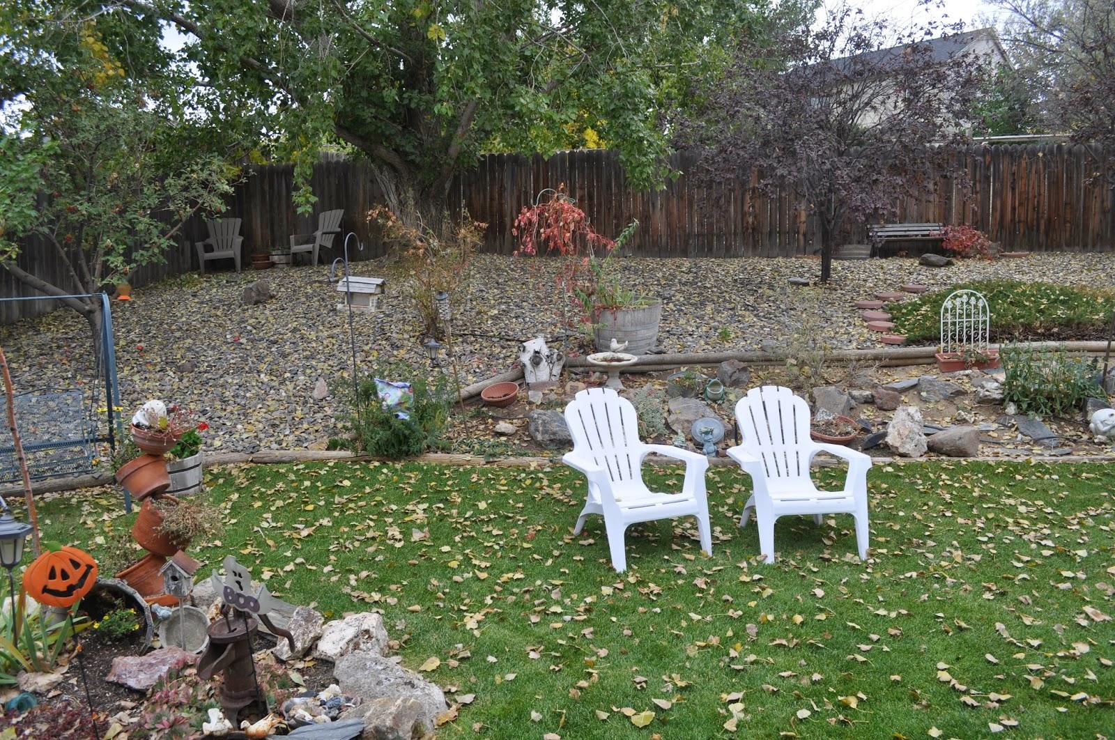 Autumn Has Come To My Big Backyard.