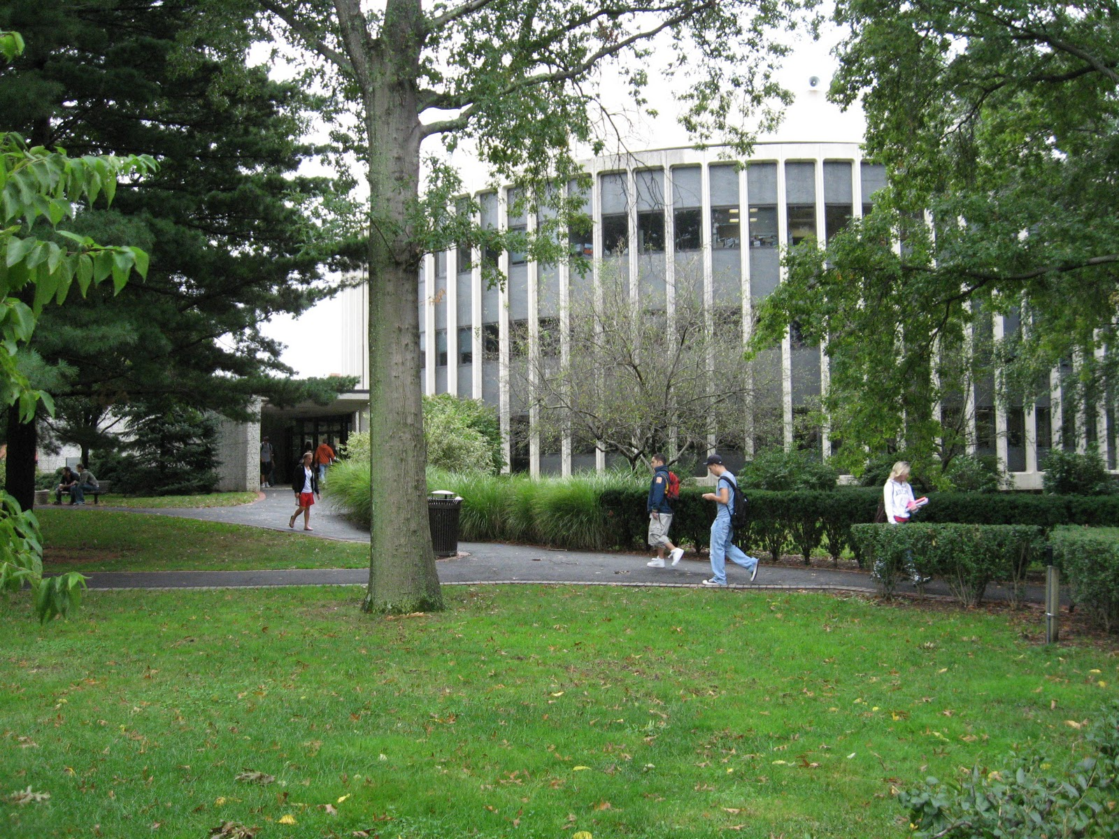 new york creative writing colleges