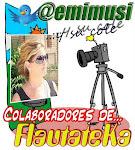 PARTICIPAMOS EN EL PROYECTO COLABORATIVO FLAUTATEKA DESDE EL CURSO 2011/12